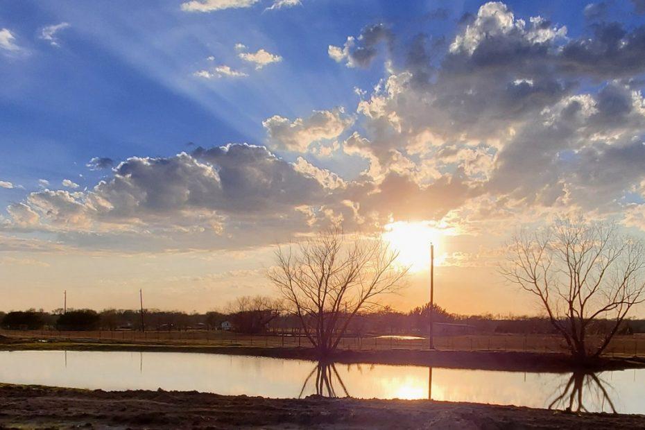 premier rv park royse city texas = pond photo